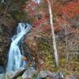 もみじライン白滝の紅葉