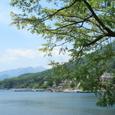 新緑の中禅寺湖と残雪の日光白根山
